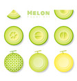 set of melons in paper art style vector image vector image