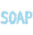 soap sign made from soap bubbles soap word vector image vector image