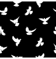 Birds silhouettes - flying seamless pattern Black vector image