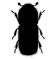 beetle silhouette vector image vector image