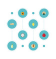 flat icons pitaya nectarine mango and other vector image vector image