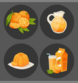 oranges and orange products vector image