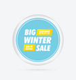 big winter sale special offer banner vector image vector image