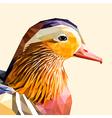 Mandarin duck portrait vector image
