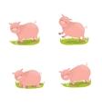 Set of cute pigs vector image