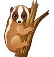 cartoon slow loris on the branch vector image