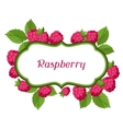 Nature background design with raspberries vector image