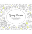 spring flowers banner template with wild meadow vector image vector image