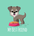 cartoon dogs background vector image