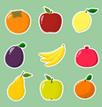 collection of fruit stickers a collection of vector image vector image