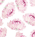 Seamless pattern with pink chrysanthemums vector image