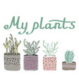 sety cosy potted plants vector image