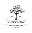 tree nature park landscaping logo vector image vector image
