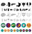 human organs flat icons in set collection for vector image vector image