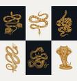 milk snake with roses skeleton royal python vector image