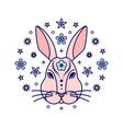 rabbit chinese zodiac sign vector image vector image
