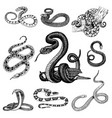 set viper snake serpent cobra and python vector image