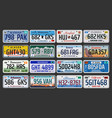 usa american states vehicle registration plates vector image
