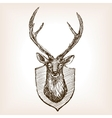 Deer head trophy sketch vector image
