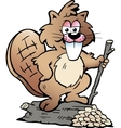 hand-drawn an rodent beave vector image vector image