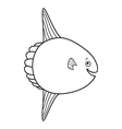 Happy Mola Fish Cartoon vector image vector image