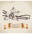 Kitchen herbs and spices vector image vector image