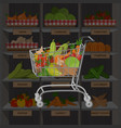 shopping cart with different goods such as fruits vector image