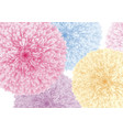 colorful flowers on white background vector image