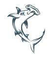 hammer head shark engraving vector image