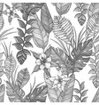 seamless black and whitefloral pattern with hand vector image