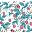 Seamless raspberry pattern Cute hand drawing vector image vector image