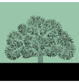 sketch of apple tree vector image