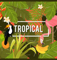 tropical flowers background summer design vector image
