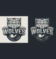 vintage football team monochrome logo vector image vector image