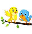 cartoon couple bird on a branch vector image