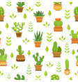 desert plants with flowers cactus in pots vector image vector image