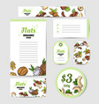 fresh nuts set cards vector image