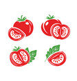 fresh red tomatoes set symbols half slice of vector image