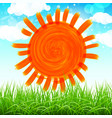 summer background with sun grass flower and vector image vector image
