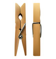 wooden clothespin on white isolated vector image