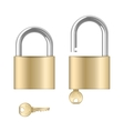 Locked and unlocked padlocks with keys vector image
