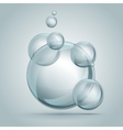 beautiful bubbles of soap vector image vector image