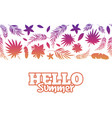 hello summer background with colorful tropical vector image