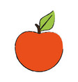 peach or apricot icon image vector image vector image
