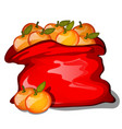 red bag filled with ripe tangerines isolated on vector image vector image