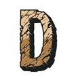 vintage alphabet letter d colorful template vector image vector image