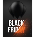 Black Friday Sale Air Balloon Poster template vector image vector image