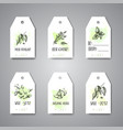 herbs and spices hanging tags herb plant spice vector image