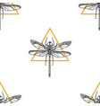 pattern dragonfly vector image vector image
