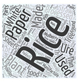 rice paper Word Cloud Concept vector image vector image